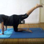 SHTVHome Training mit Roman Po